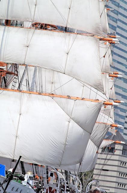 Full Sailed Nippon Maru