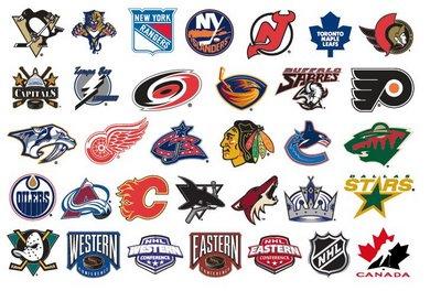 eishockey liga usa