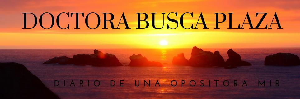 Doctora busca plaza: Diario de una opositora MIR