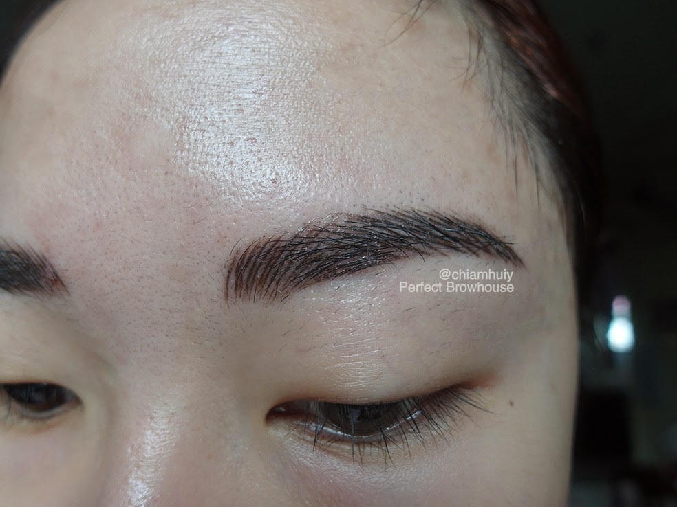 3d Eyebrow Embroidery Review Perfect Brow House Celine Chiam