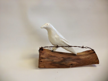 """Albino Crow"" ( Copyright)"