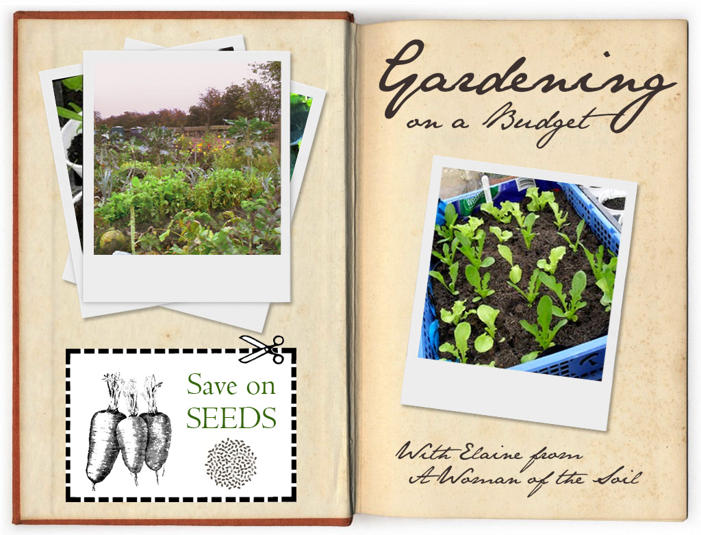 Lovely Greens | EDIBLE GARDENING, HANDMADE BEAUTY, DIY ...