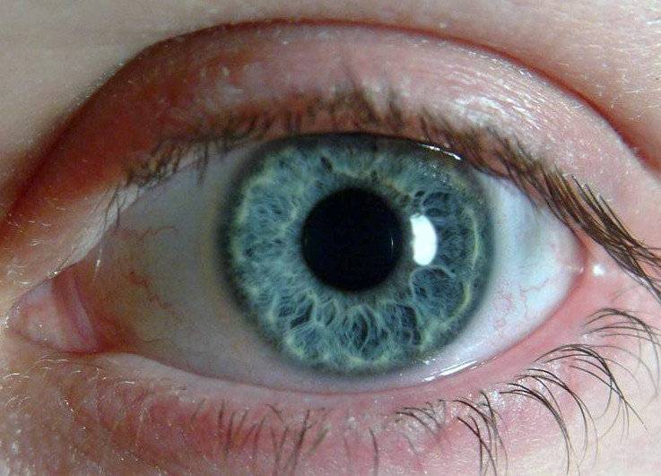 Close-up photo of a human eye with a blue-green iris