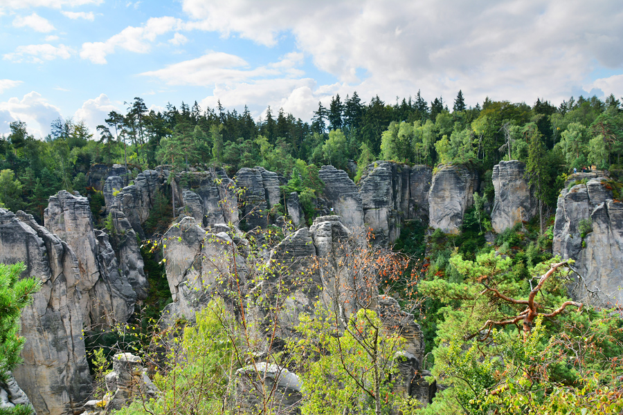 Prachowskie Skały w Czeskim Raju
