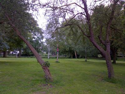 yarn bomb park tree