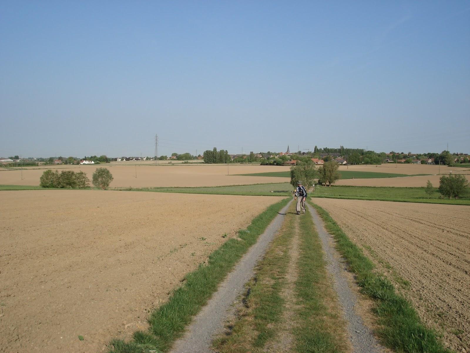 veldweg tussen Bellegem en Bellegembos