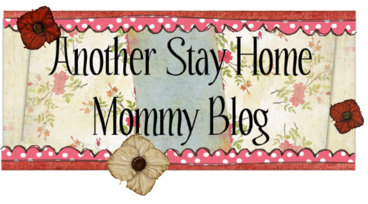 Another Stay Home Mommy Blog