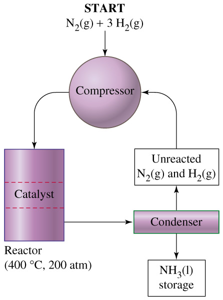 The hsc with ab chemistry the haber process so now we get into the haber process itself this can seem confusing at first since textbooks like to have overly complex diagrams so i found this one to ccuart