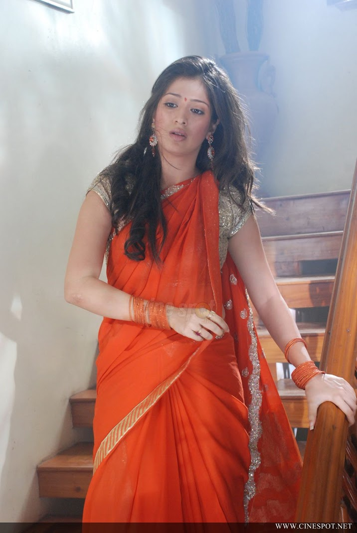 Lakshmi Rai Hot in Orange Saree