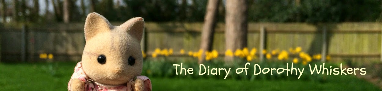 The Diary of Dorothy Whiskers