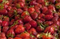 Le fragole possono essere responsabili di orticaria