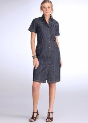 Plus Size Denim Shirt Dress
