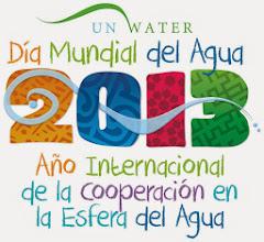 2013 Año Mundial del Agua.