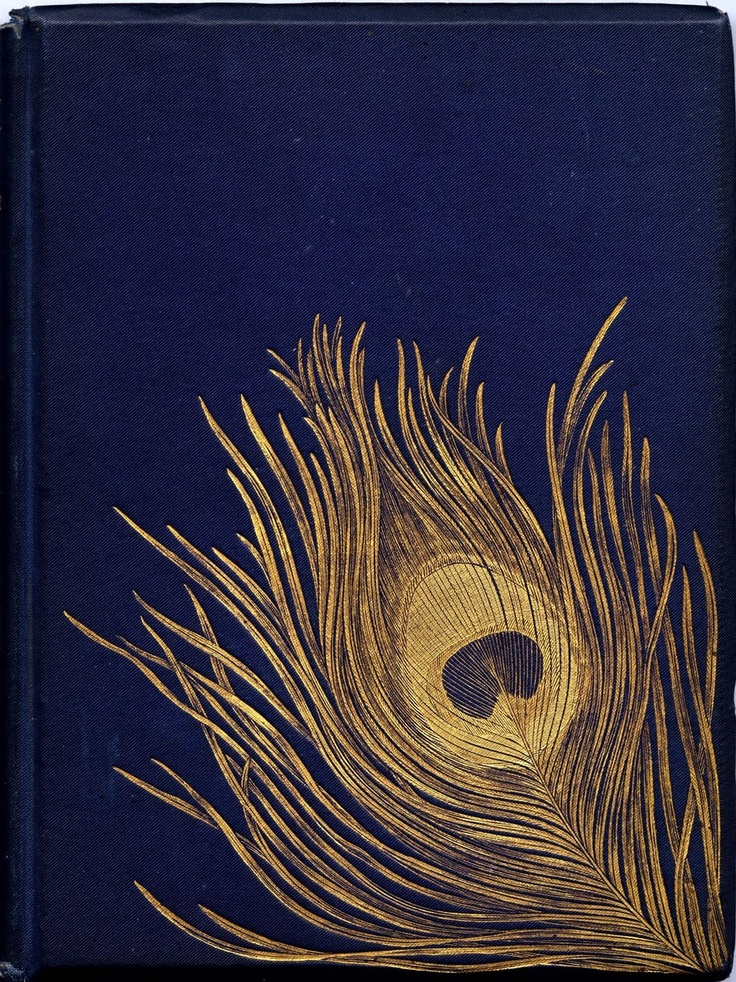 Beautiful Vintage Book Cover : Nature trails a natural sketchbook exchange mighty
