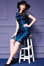 Three-Color Short/Half Sleeve Lace OL Dress