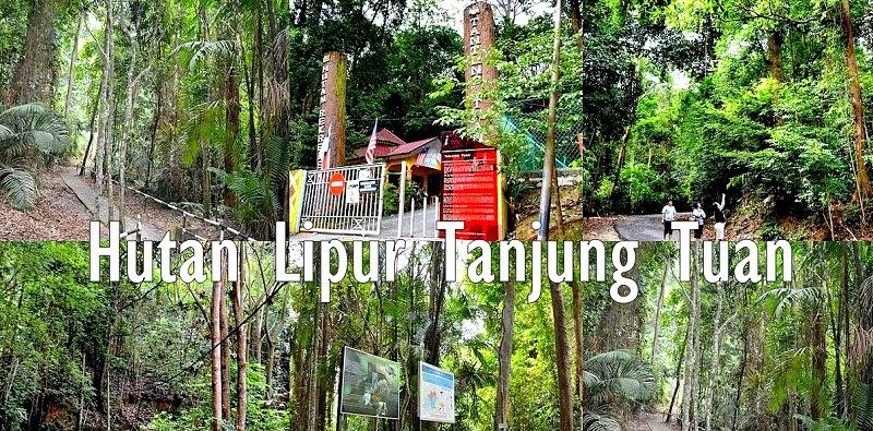 Menikmati Keindahan Alam dan Berekreasi di Hutan Lipur Negeri Melaka