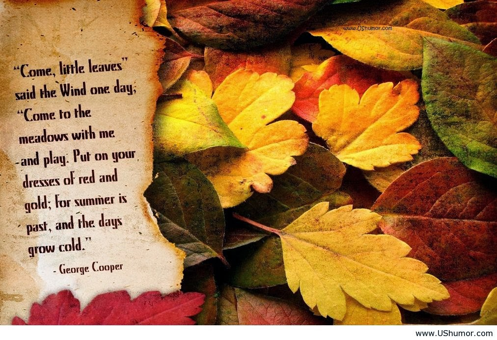 Catchy Quotes For Autumn. QuotesGram