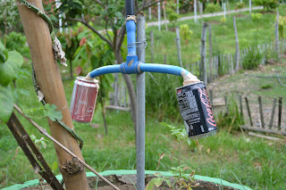 recycled tin cans at Garin farm