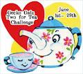 Current challenge at Gecko Galz