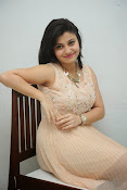 vaishali patel latest glamorous photos-thumbnail-14
