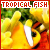 I like tropical fish