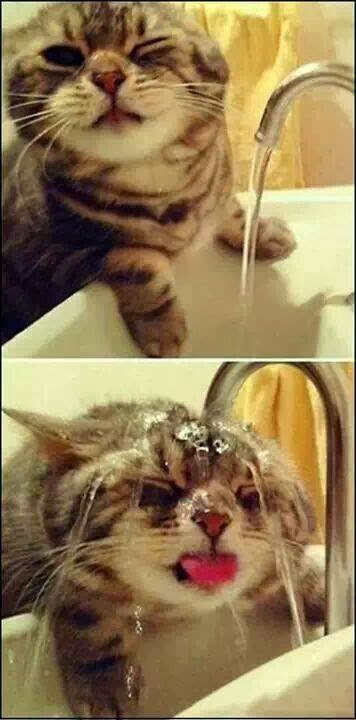 Seronok betul bila dapat air