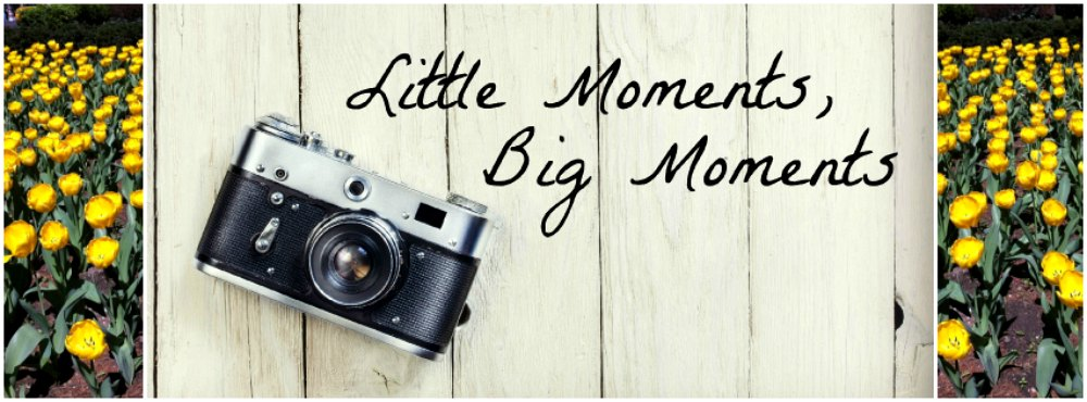 Little Moments, Big Moments