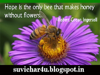 Hope is the only bee that makes...