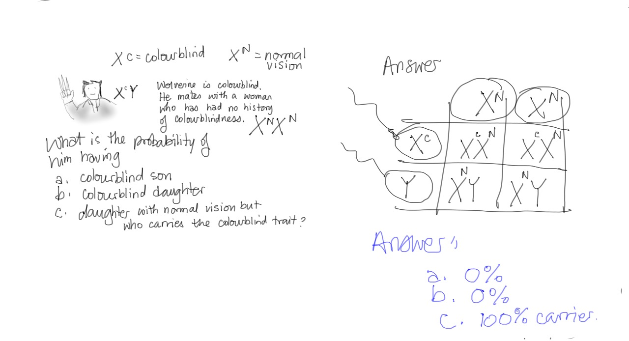 Biology 12 Gladstone: Practice problems in Genetics and the topic ...