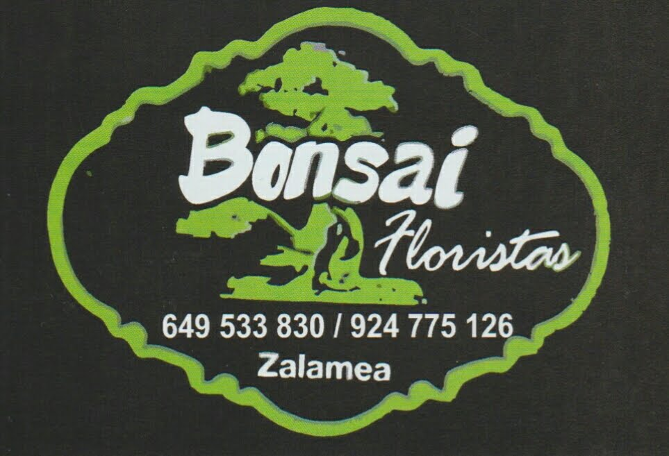 FLORISTERÍA BONSAI