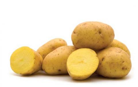 Different Colors of Potatoes - Yellow Potatoes