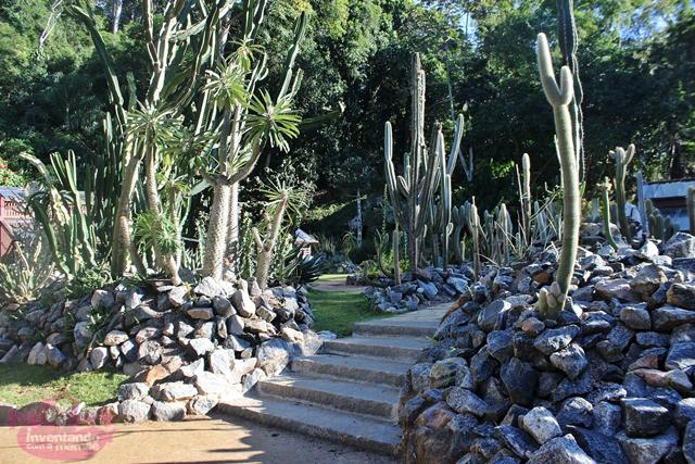 Cactário do Jardim Botânico do Rio