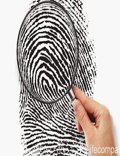 sinh trắc dấu vân tay là gì?