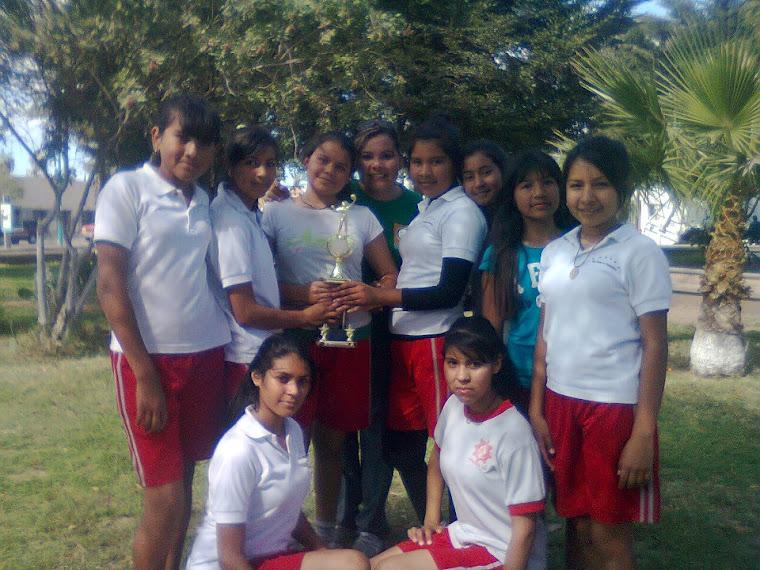 Equipo Femenil Voleibol