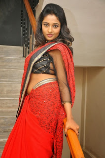 Actress Amitha Rao Pictures in Saree at Chandamama Kathalu Movie Press Meet 0062