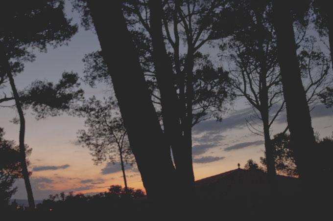 Imatge pel post m'inspira... la mandarina del blog ©Imma Mestre Cunillera