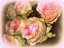 'Just Because' Roses