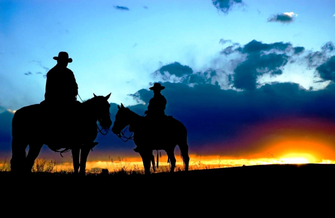 Cowboy Wallpaper   Free Android Application