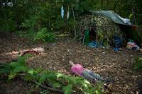 TIFF 2012 norway Sara Johnsen sex dirt forest bestiality