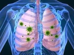 http://penjualanobatherbalalami.blogspot.com/2014/03/cara-agar-paru-paru-tetap-sehat.html