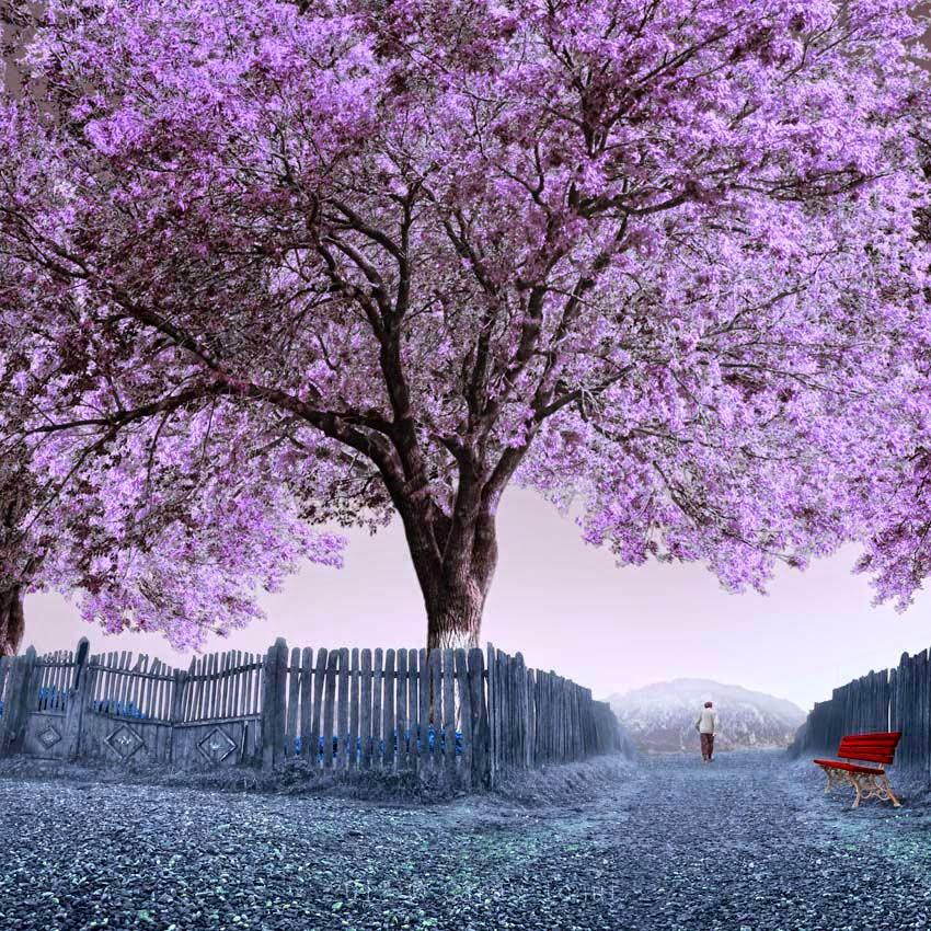 Caminata en otoño