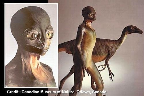Reptilian Aliens Unmasked