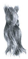 charcoal drawing of hair