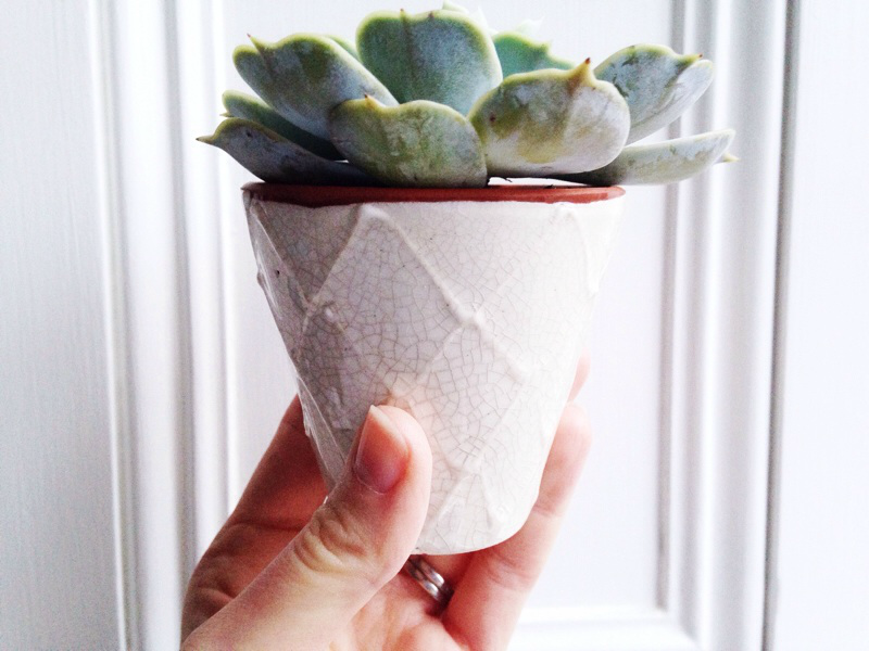 White Ceramic planter from Anthropologie