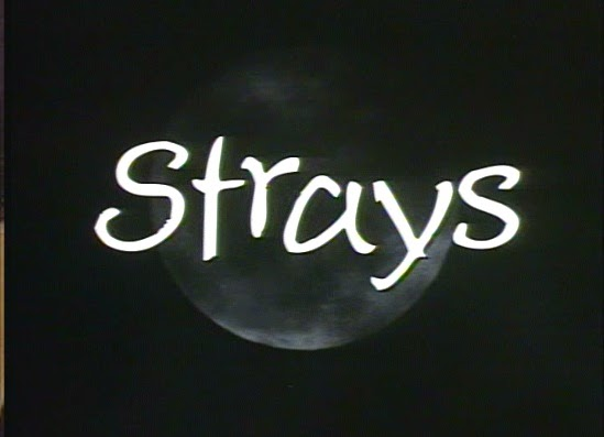 Strays, launched in 1991, is a horror movie that marked the childhood of many people who grew up in the 90's.