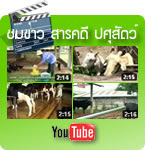 วีดีโอที่เกี่ยวกับปศุสัตว์