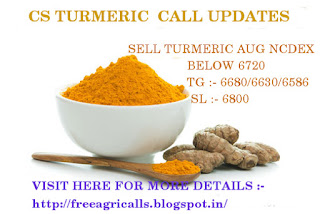 Agri commodity Calls, Agri commodity Tips, capitalstars, Free agri calls, Free trail Tips, Turmeric Tips, Trading Tips,