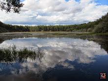 Las lagunas de Fontecha