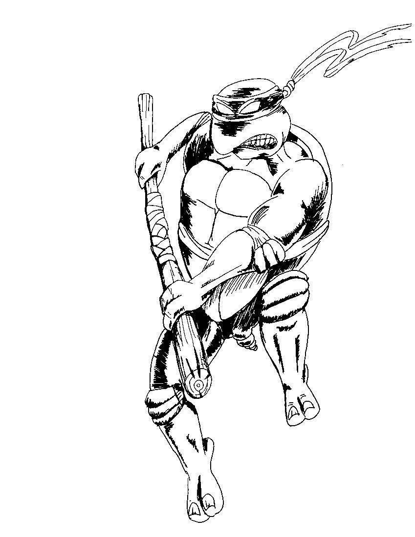 teenage mutant ninja turtles martial arts training manual