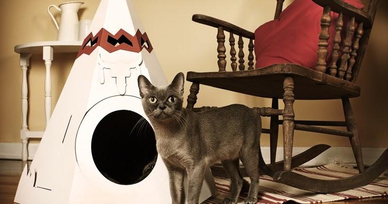 Cardboard Cat House Scratcher